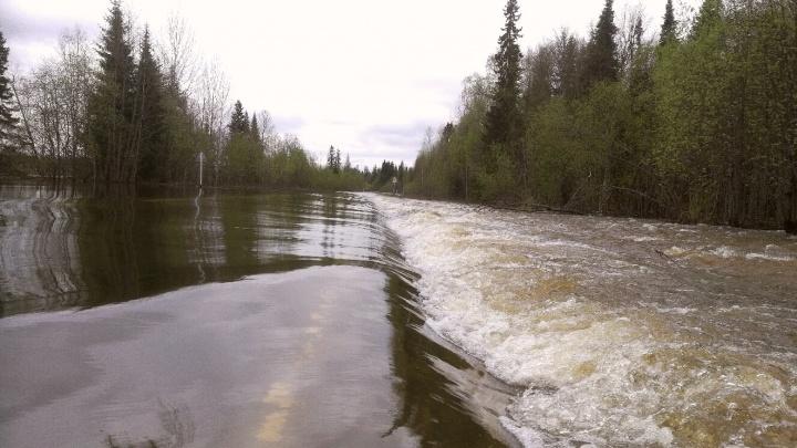 В ГИБДД рассказали, какие дороги на севере Прикамья перекрыли из-за паводка