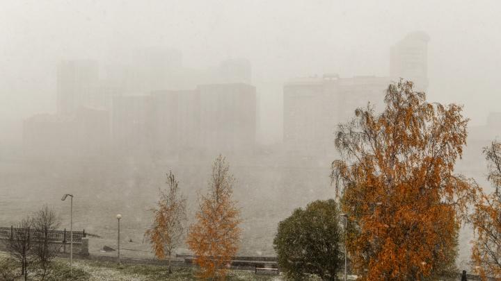 Свердловская область в эпицентре ненастья: синоптики пообещали региону ветреную и мокрую неделю