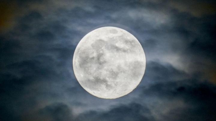 Ночью над Новосибирском взошла огромная Луна — пять впечатляющих кадров