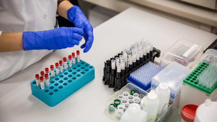 За сутки в Красноярском крае коронавирусом заболел еще 21 человек: куда добралась инфекция