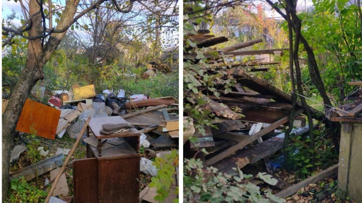 «Пенсионеры пришли, поплакали и ушли»: на Уралмаше сносят садовые домики, построенные 70 лет назад