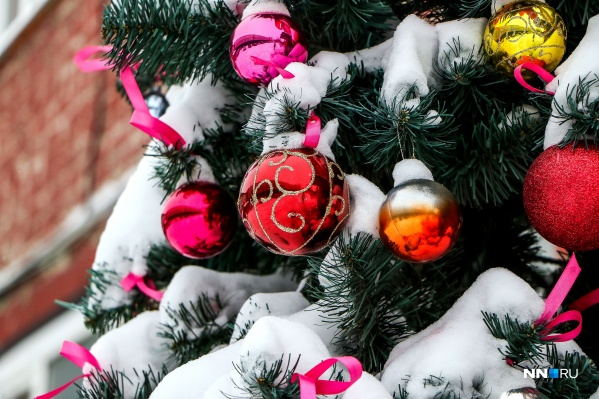 В этом году в Первомайске новогоднюю елку устанавливали без конкурса