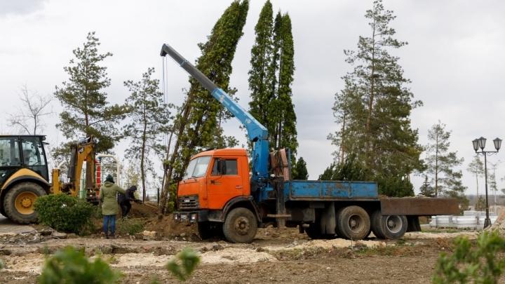 В вырубленном ЦПКиО Волгограда выроют котлованы для искусственных водоемов