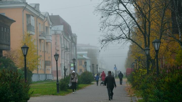 На выходные в Архангельске сохранится тепло