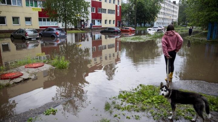 Открывают детские лагеря и спасают город от потопа: что случилось в Ярославле за сутки. Коротко