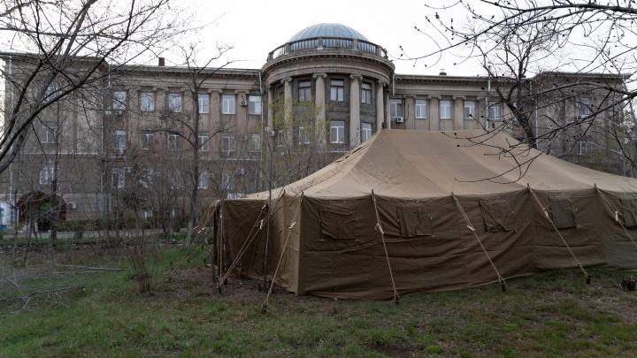 У инфекционного госпиталя разворачивают палаточный лагерь: в Волгограде 38 заражённых коронавирусом