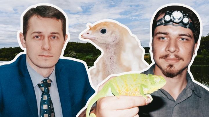 Дело зоолога, уход министра ЖКХ и покупка «Евродона»: 161.RU подводит итоги весны