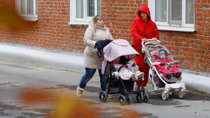 Хотят пожить для себя: Волгоград вошел в список самых бездетных городов России