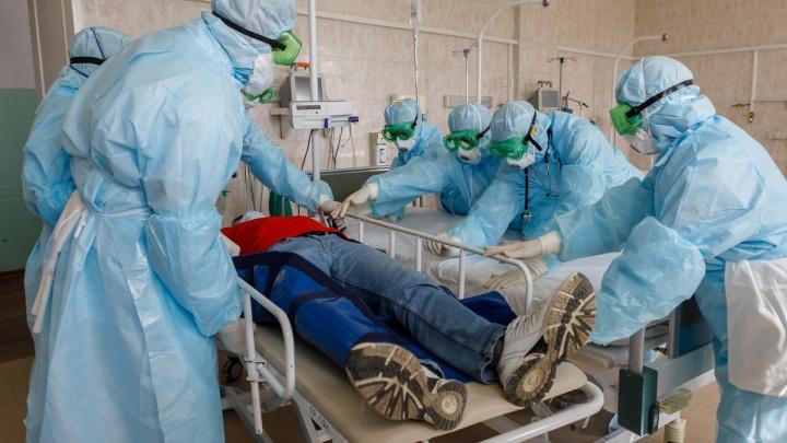 Двое умерло, 133 заболело: в Волгограде и области резко выросло число больных коронавирусом