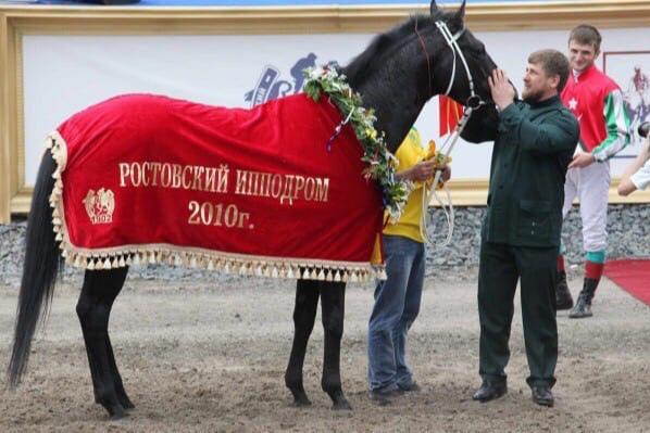 Лошадь Кадырова побеждала на скачках в Ростове