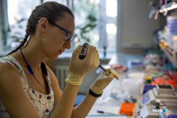Пандемия коронавируса изменила планы учёных — на первое место вышли разработки, которые помогут в борьбе с новой инфекцией