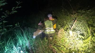 «След был потерян»: нижегородский доброволец рассказала о поисках 14-летнего подростка в лесу