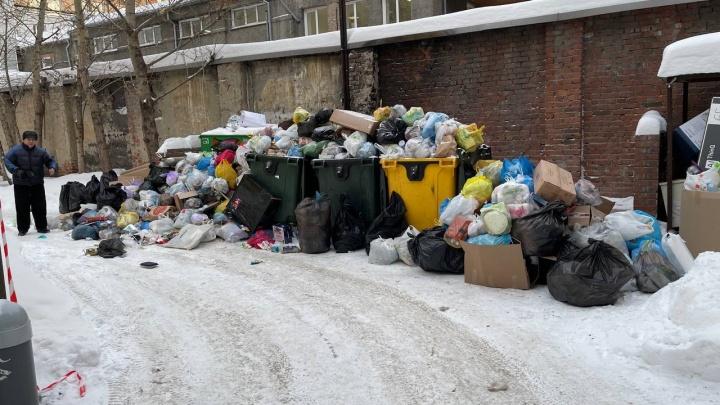 «Экология-Новосибирск» объяснила, почему с контейнерных площадок не вывозили мусор