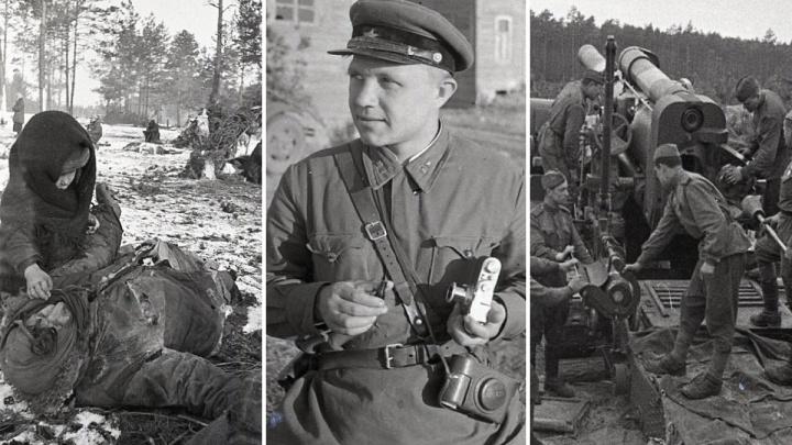 Репортаж с войны: Великая Отечественная глазами ярославского фотокорреспондента