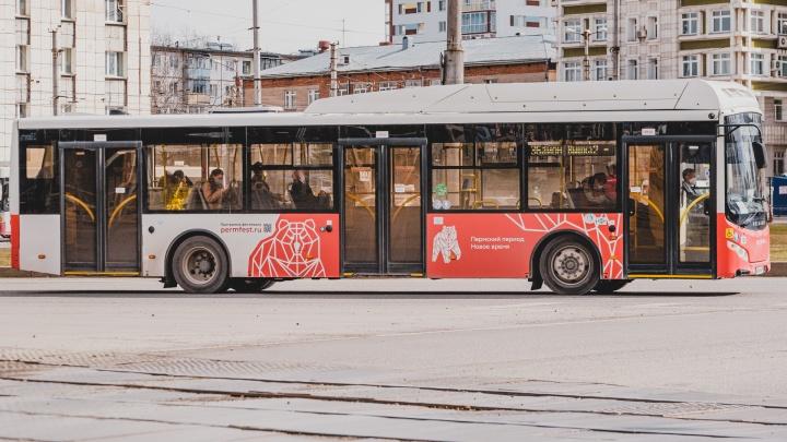 Что власти хотят изменить в системе общественного транспорта Перми (да, опять). Разбор