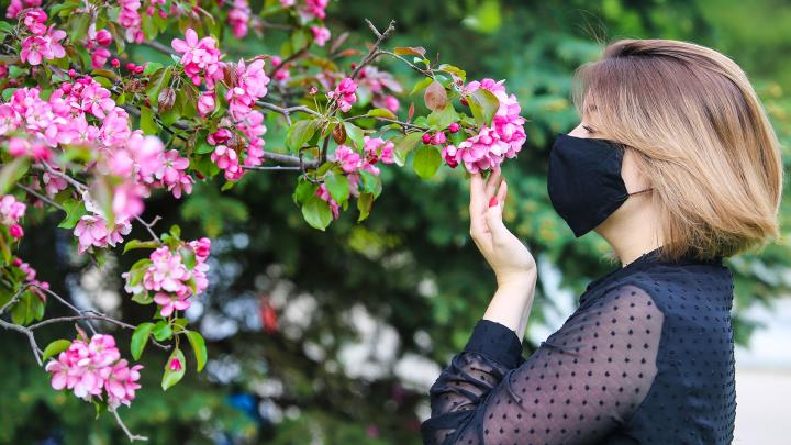 Цветущая Уфа: любуемся благоухающими парками и скверами города