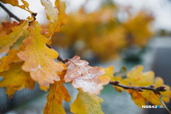 Все выходные синоптики прогнозируют дождь и мокрый снег