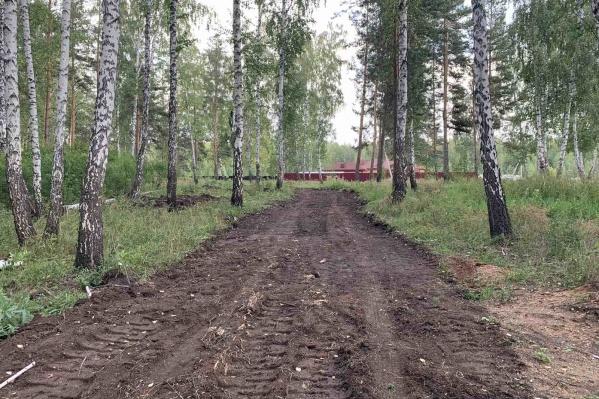 Бульдозер прошелся вокруг коттеджей, построенных в лесу на Северо-Западе Челябинска