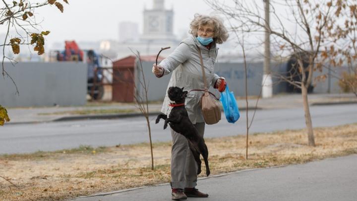Настало время серости и дождя: в Волгоград надолго пришли осенние холода