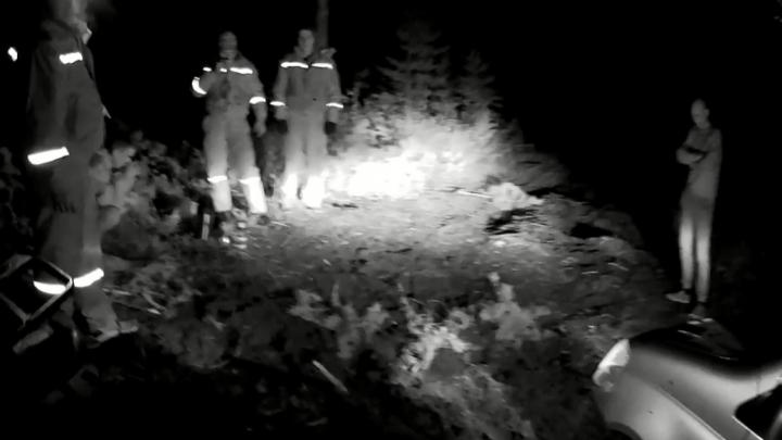 В районе резиденции тюменского губернатора в ночи спасатели искали двух грибников