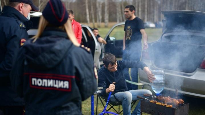 Шерстили целый район: в Ярославле устроили облаву на шашлычников
