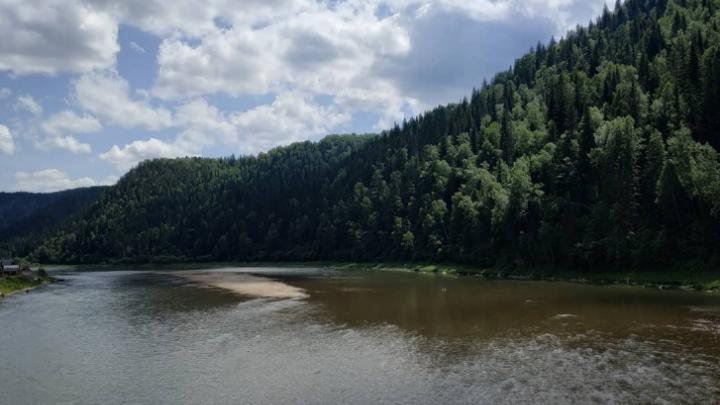 Кузбасские золотодобытчики получили штрафы за загрязнение рек региона