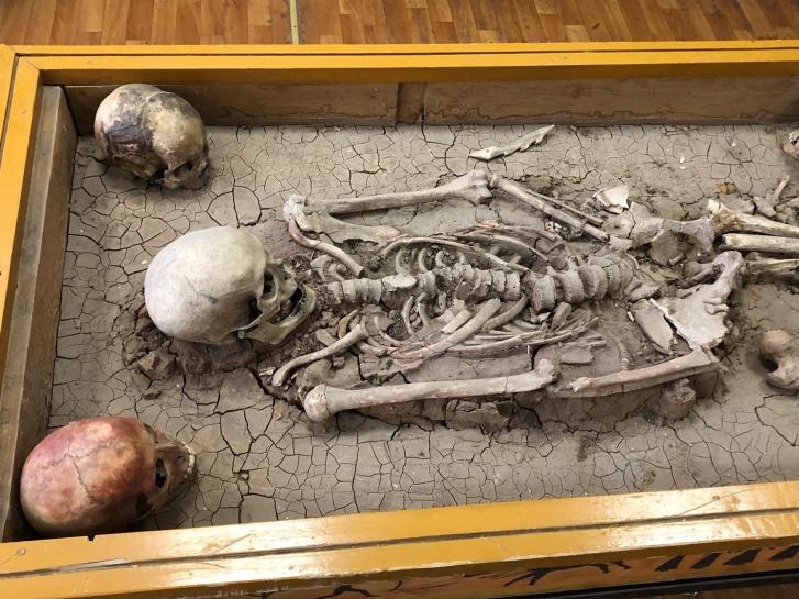 Ученые провели большую работу, чтобы идентифицировать останки самарского губернатора и его семьи