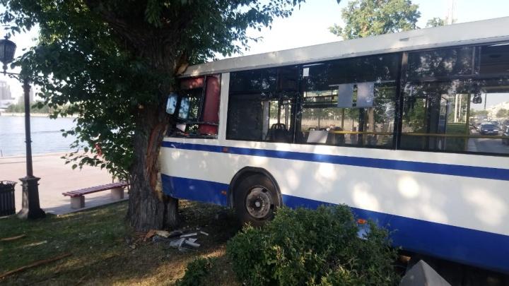 Резко повернул и поехал в дерево: публикуем видео ДТП с автобусом на Плотинке