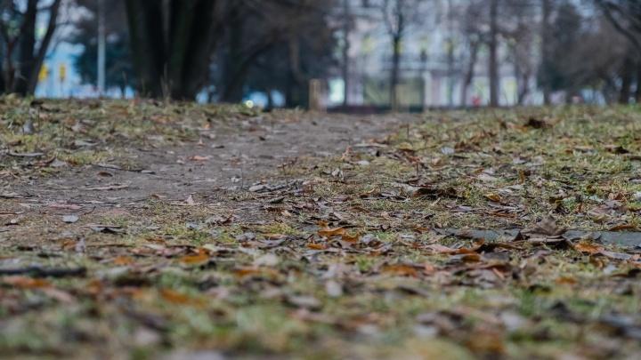 МЧС предупредило о заморозках в Прикамье до -2 °С