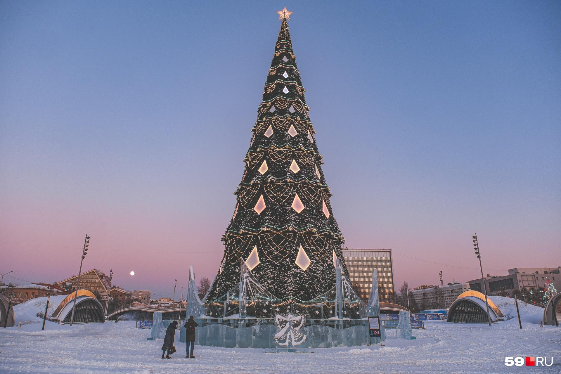 На эспланаде из-за коронавирусных ограничений нет ледового городка, только главная елка города