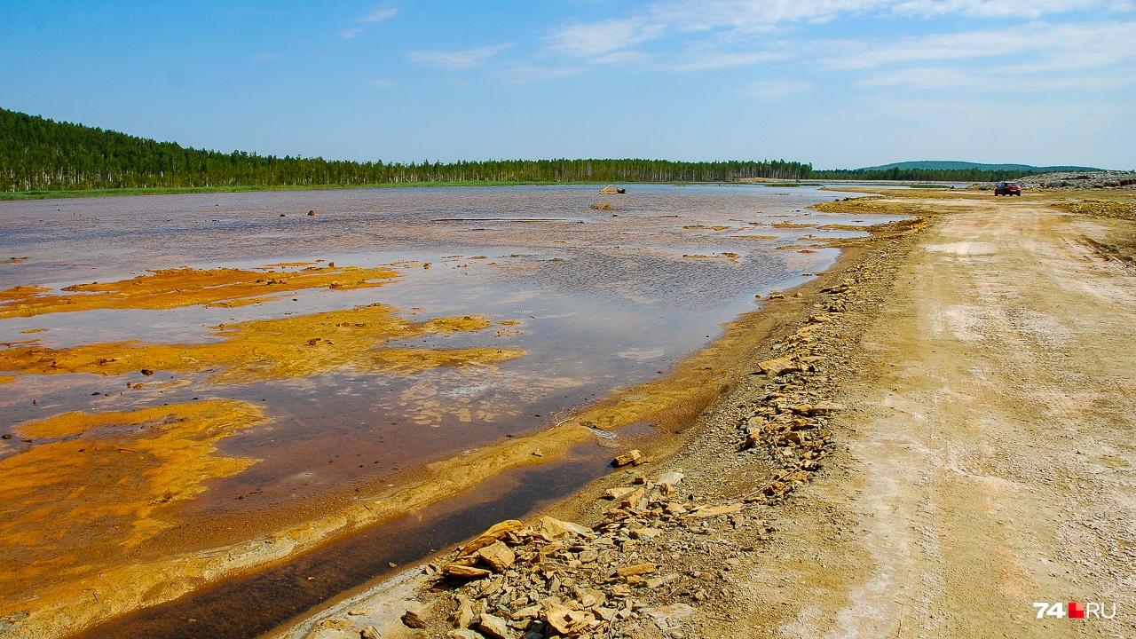 Пруд — это разлив в загрязнённой пойме Сак-Элги прямо перед её впадением в Миасс