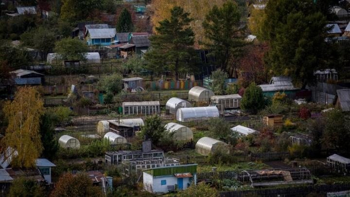Дело о стрельбе во время дачного мальчишника: новосибирская полиция задержала двух участников