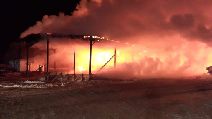 Горело более 2 тысяч квадратных метров: в поселке Тонкино сгорел деревообрабатывающий цех