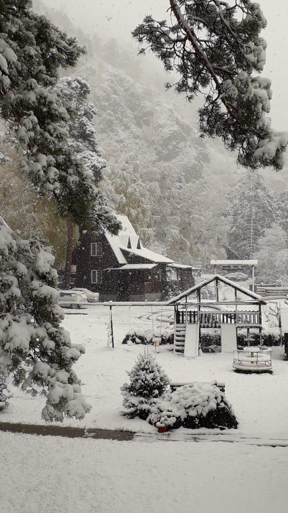 Под слоем снега всё выглядит умиротворённо и даже немного по-новогоднему