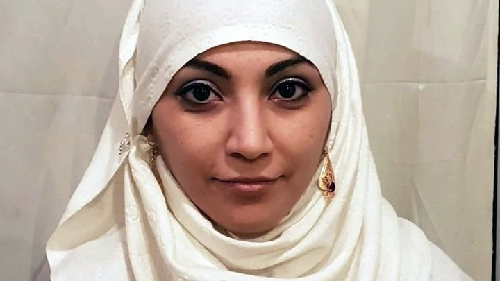 Адвоката, задержанного во время онлайн-семинара, подозревают в организации незаконной миграции иностранцев