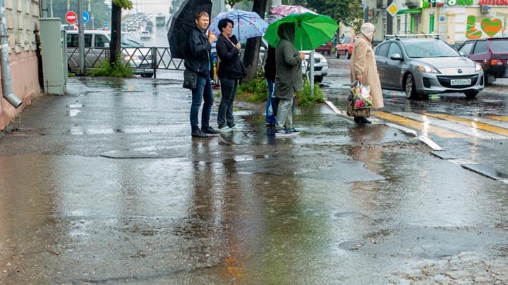 Лето закончилось: на Ярославль резко обрушатся осеннее похолодание и дожди