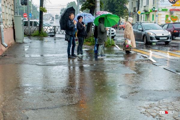 В Ярославле на предстоящей неделе будет дождливо