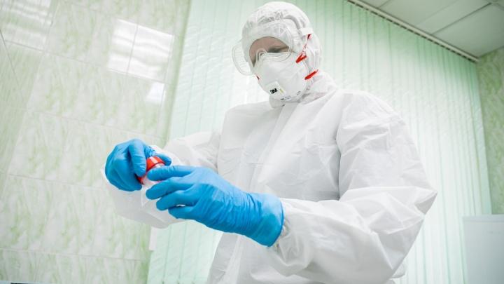 Новая статистика за сутки: в НСО выявили 109 заболевших коронавирусом