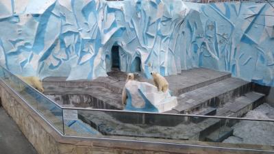 Сохраним каждое животное: на помощь Новосибирскому зоопарку выделят 27,5 млн рублей
