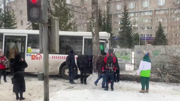 Водителю автобуса стало плохо за рулем. Он снес дерево у детской краевой больницы и скончался в скорой