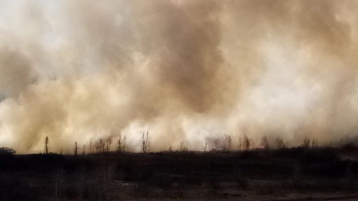 В разных частях Новосибирска поднялся дым: фото от читателей