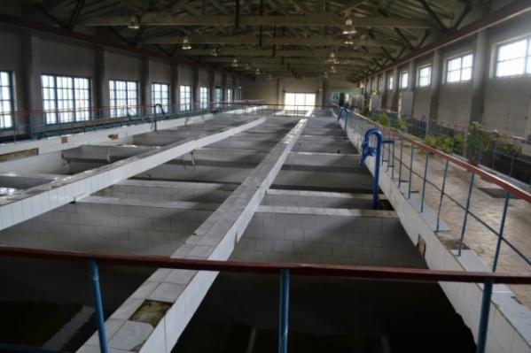 Арбинские очистные сооружения останавливают ежегодно