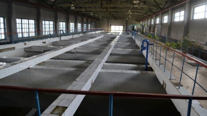 В Кургане остановят Арбинские очистные сооружения