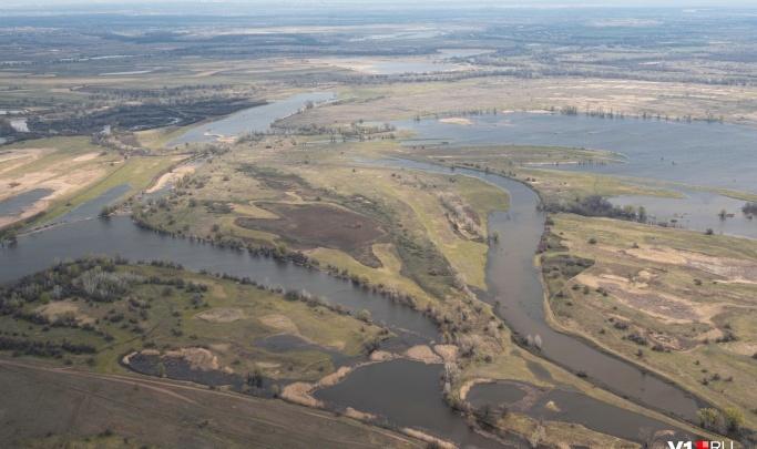 Получится заполнить большинство нерестилищ: сброс воды на Волге продлится до середины мая