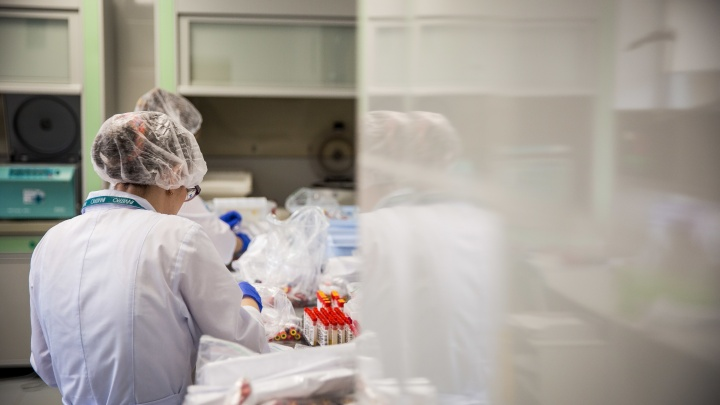 Три прототипа вакцины «Вектора» от коронавируса успешно прошли испытания