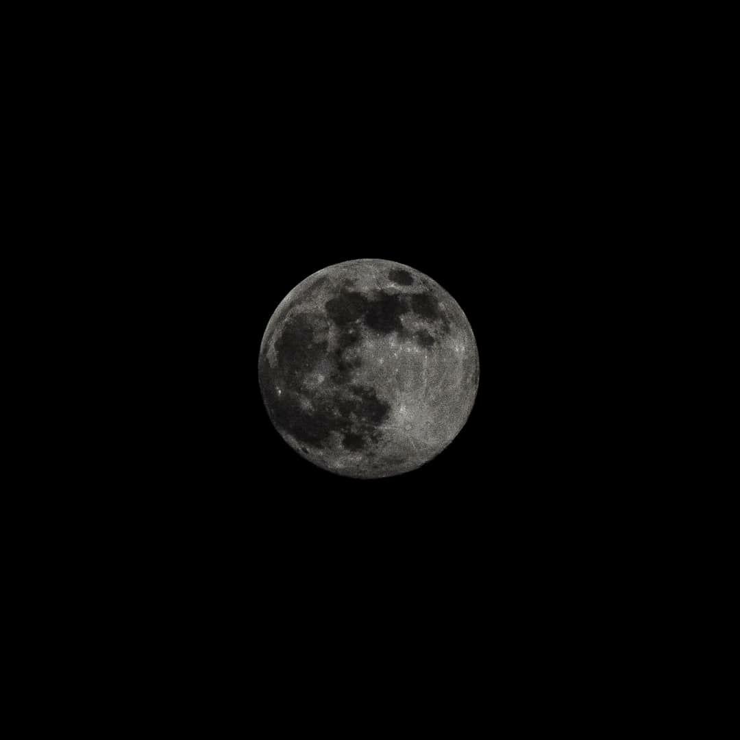 Вот она, Луна во всей красе! 99% видимость, через несколько часов полнолуние!