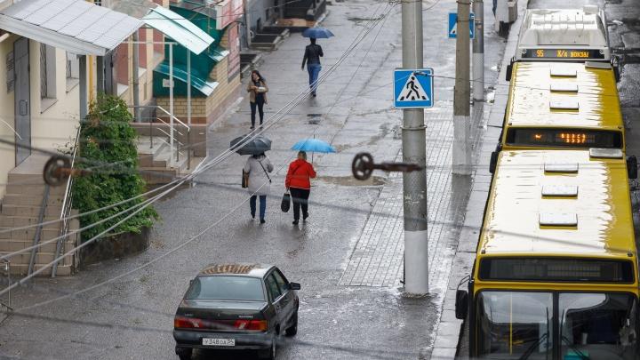 Волгоград и Урюпинск лидируют по числу заболевших коронавирусом