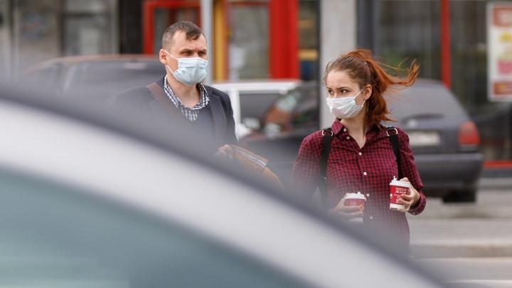 Теперь в крае больше 800 инфицированных COVID-19: 49-й день коронавируса в Красноярске