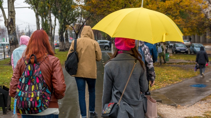 Шаг до зимы: синоптики рассказали о погоде в ноябре в Самарской области