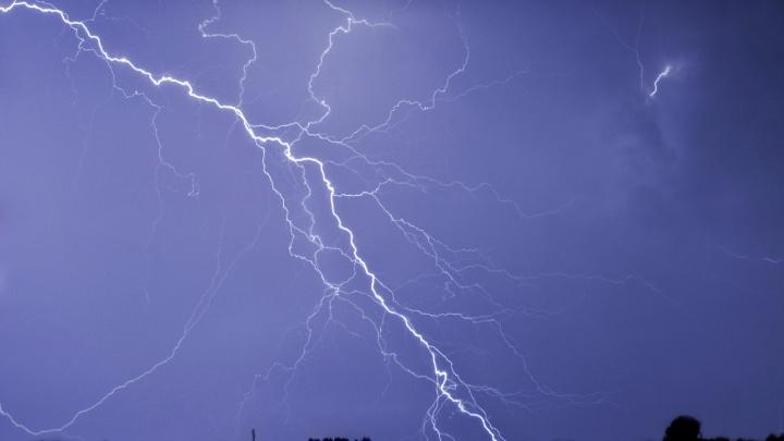 В МЧС дали новое экстренное предупреждение для Ярославской области: обрушится ветер